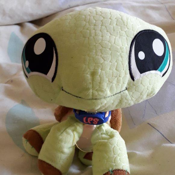 LPS  turtle