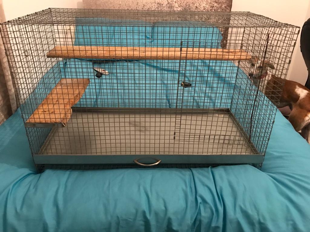 Rat/Chincilla/Degu cage