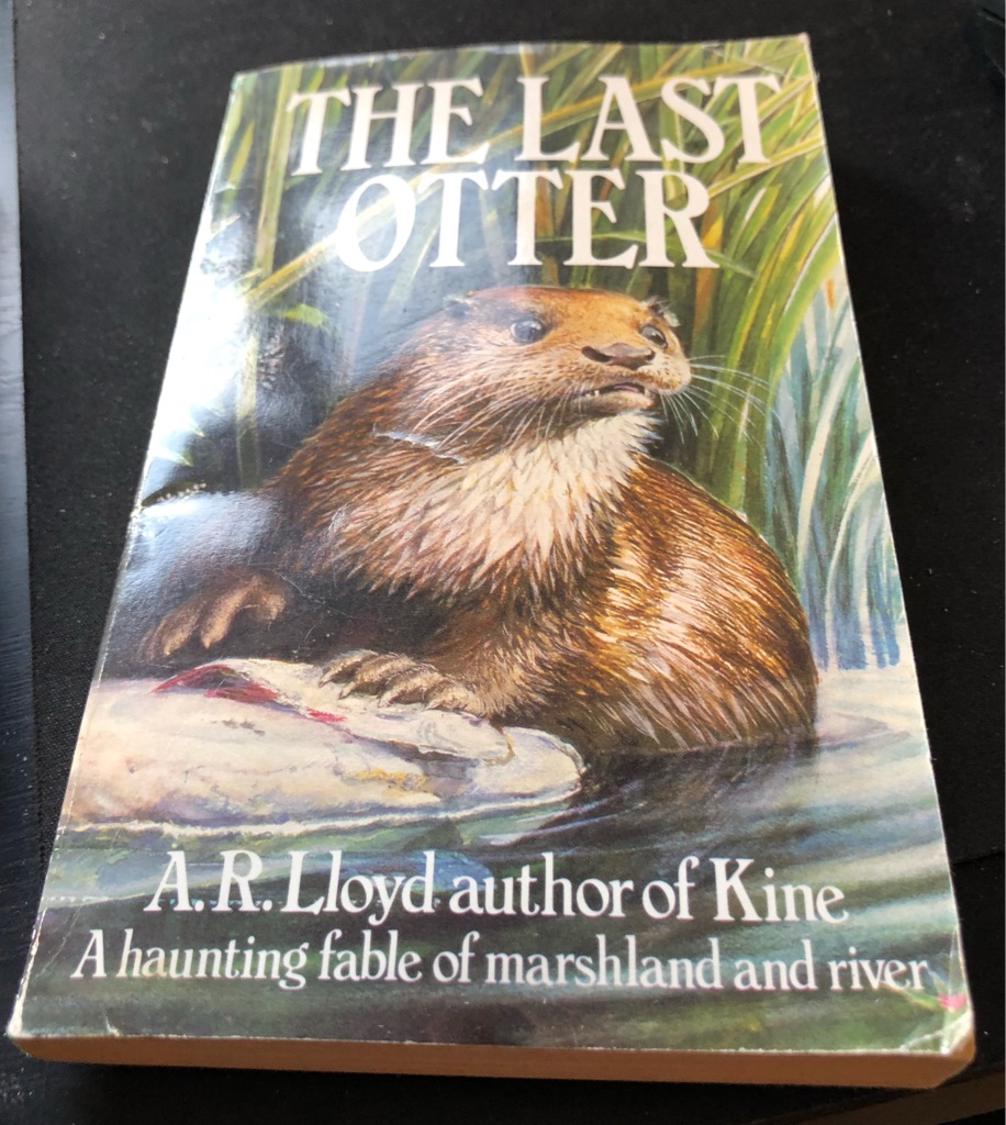 THE LAST OTTER BOOK