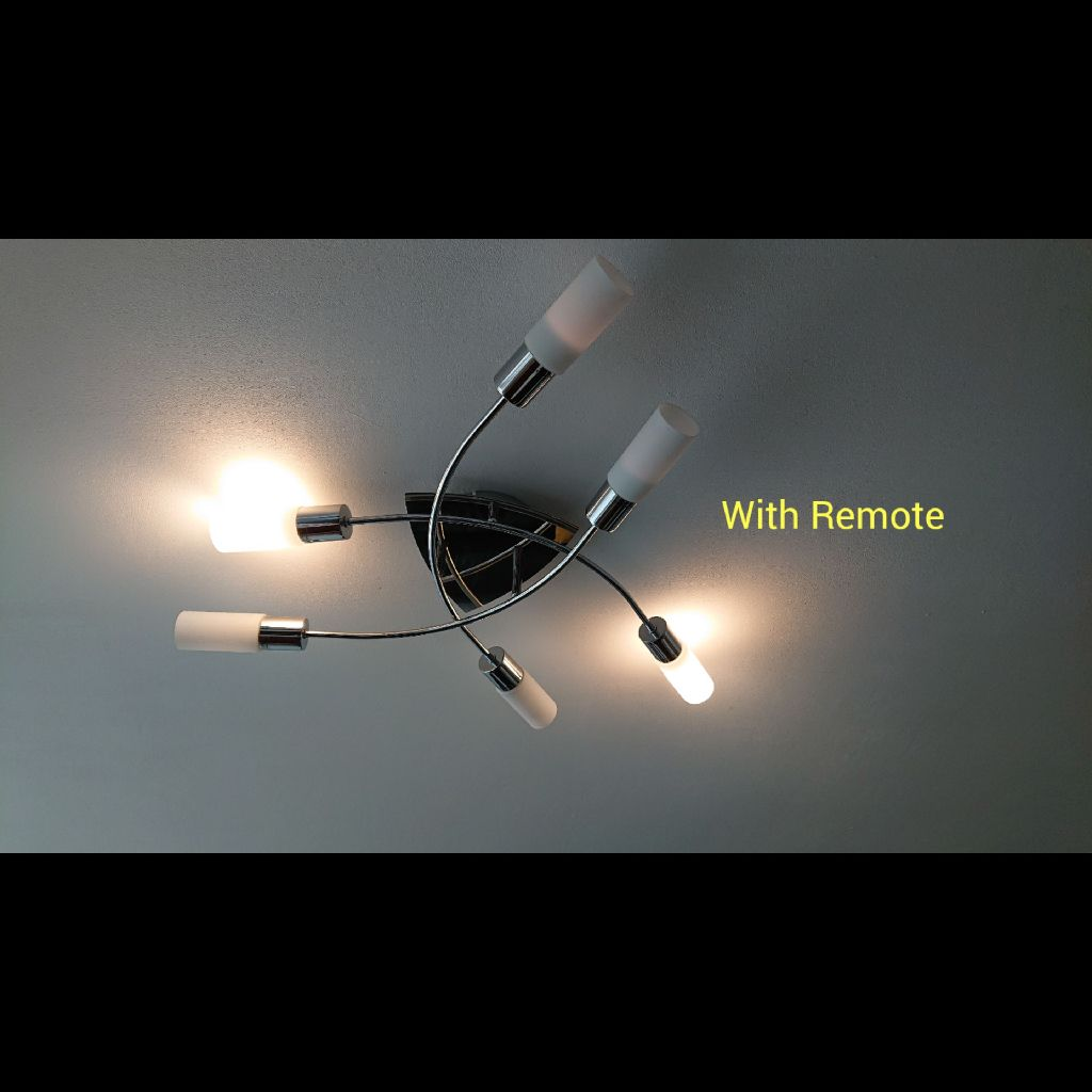 Ceiling Light (with Remote)