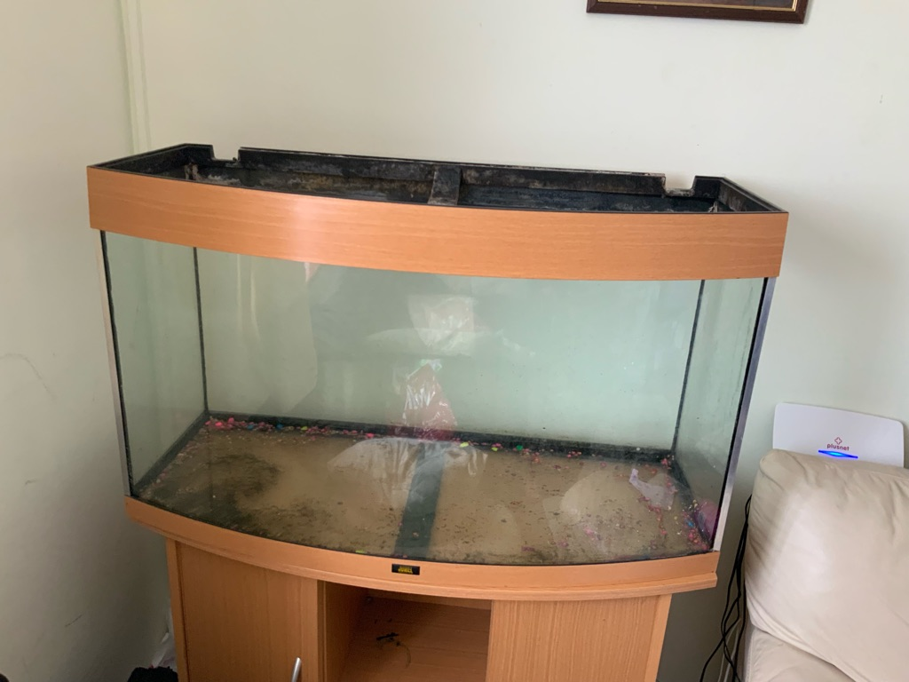 3ft bowed fronted fish tank