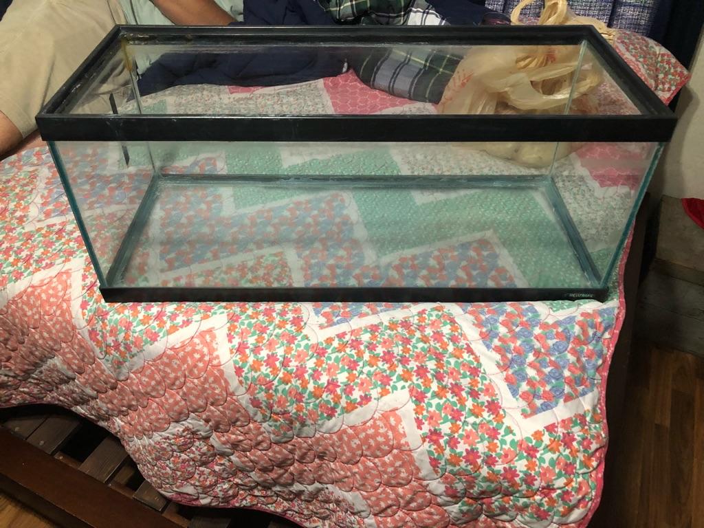 Fish/pet tank