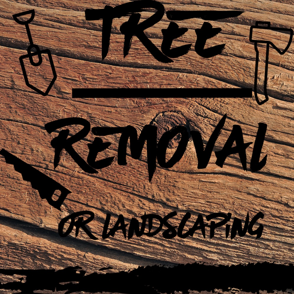 TREE REMOVAL/LANDSCAPE