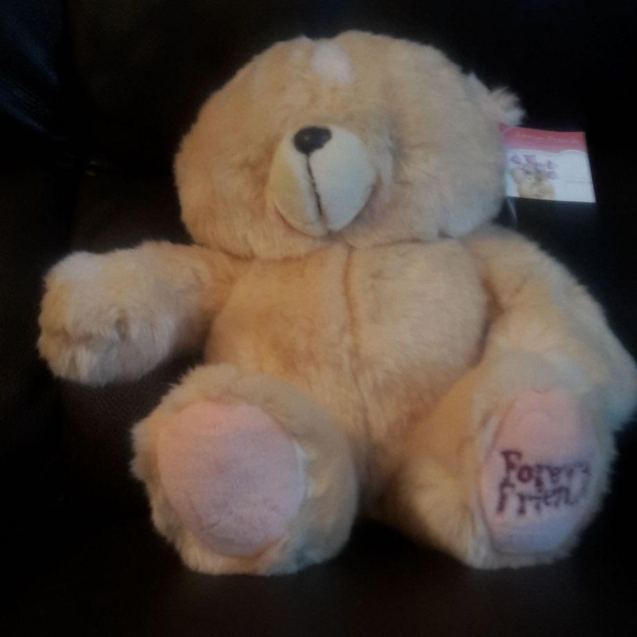 Forever Friends Bear BNWT