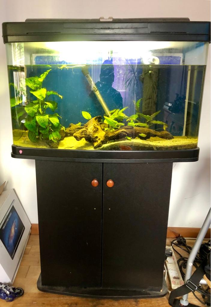 Interper fish pod 120 + free stand