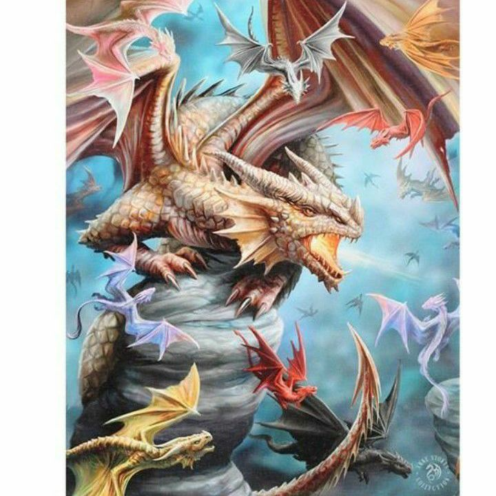 19X25CM DRAGON CLAN CANVAS PLAQUE BY ANNE STOKES