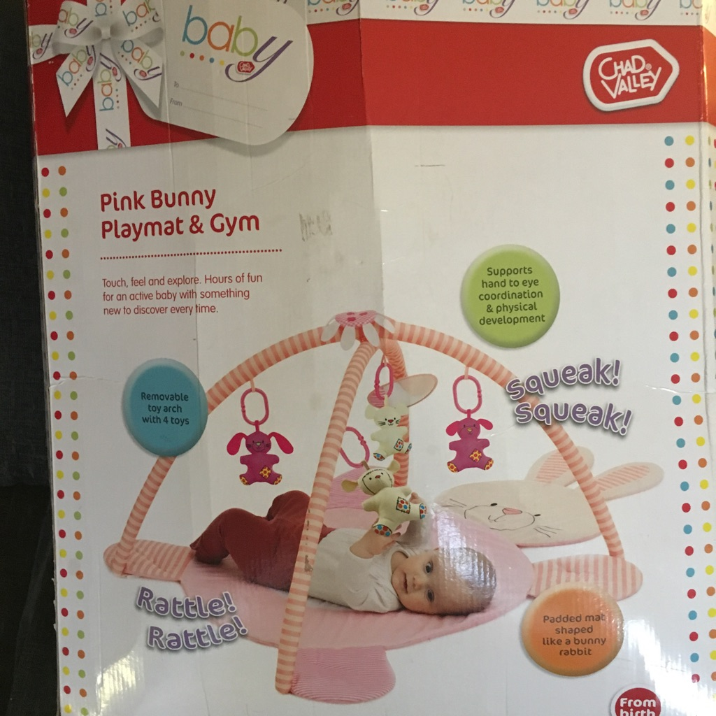 Pink bunny playmat and gym never used