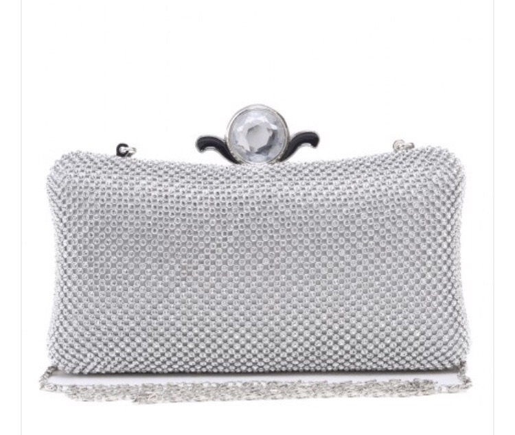 Ladies clutch handbag