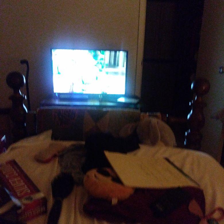 TV VCR