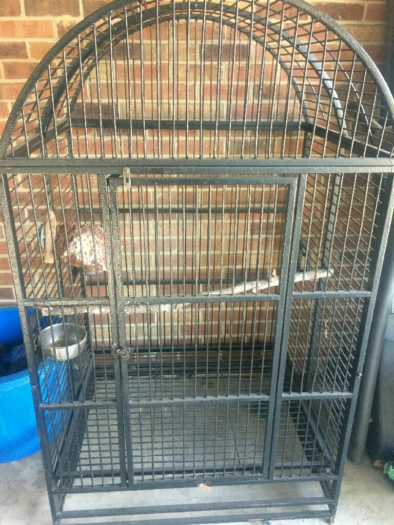 Xl birdcage