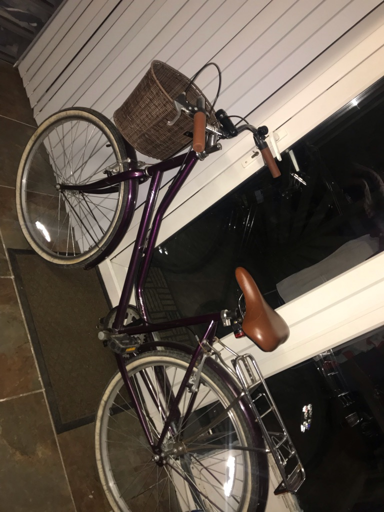 Ladies/Teenager Basket Bike