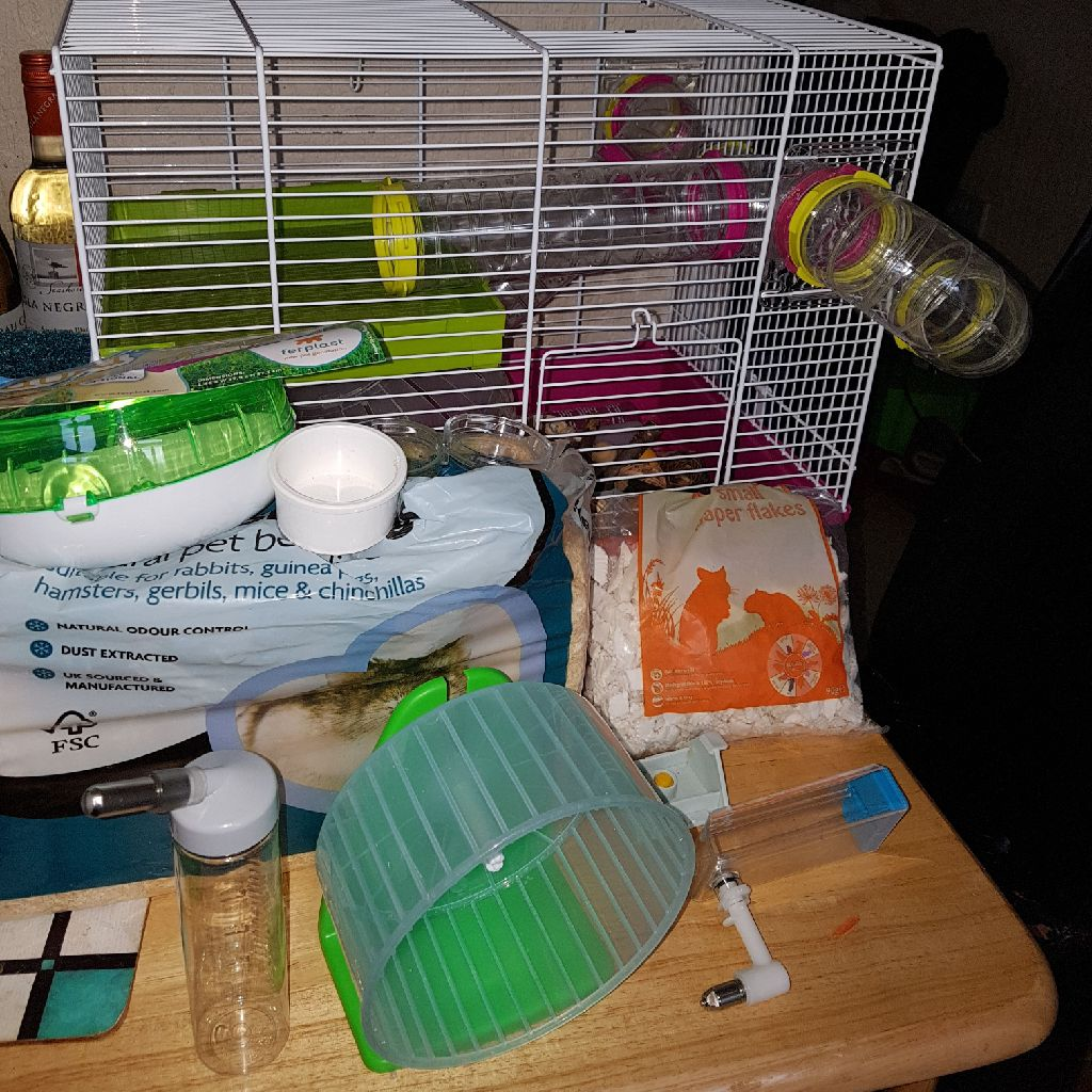 Hammster cage