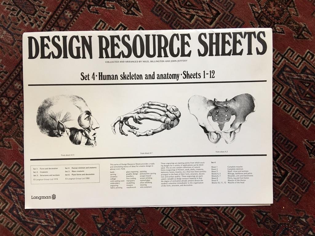 Design resource sheets human skeleton