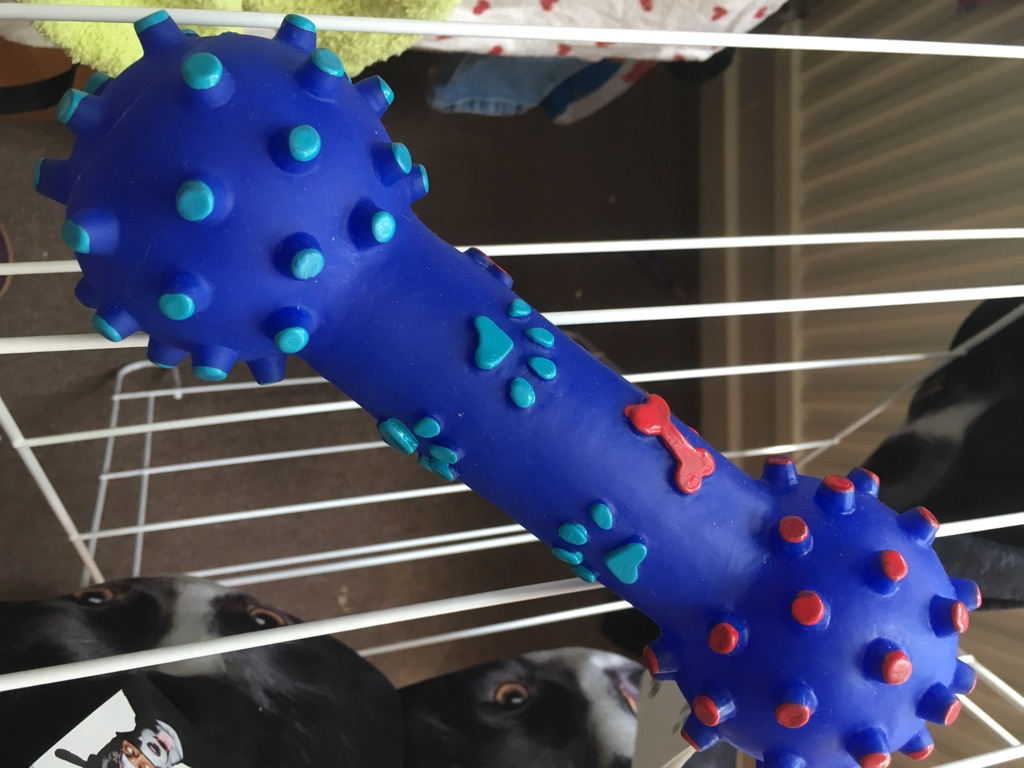 Doggie toy