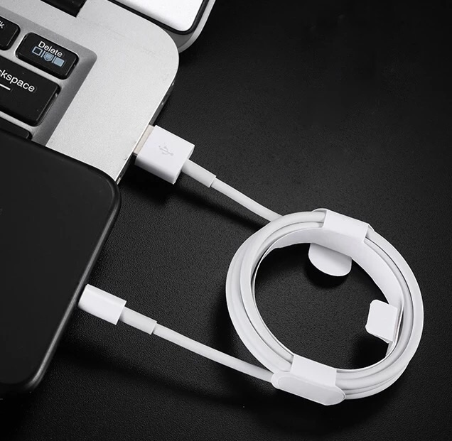 Apple iPhone charger cables
