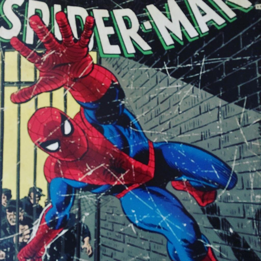Large Spider-Man picture - Marvel