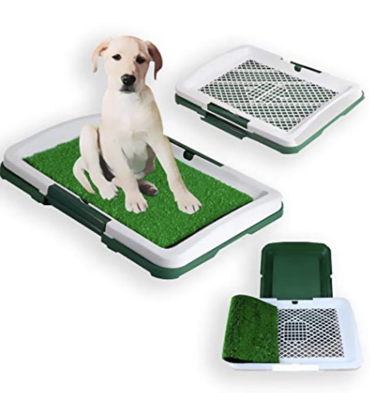 Pet training grass