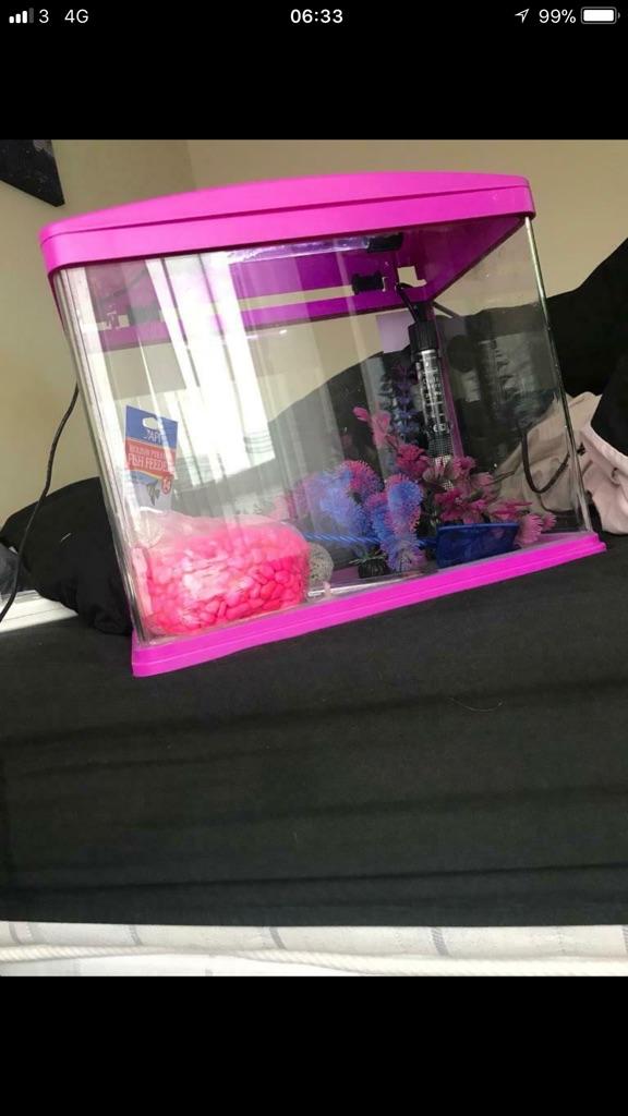 Led pink fish tank
