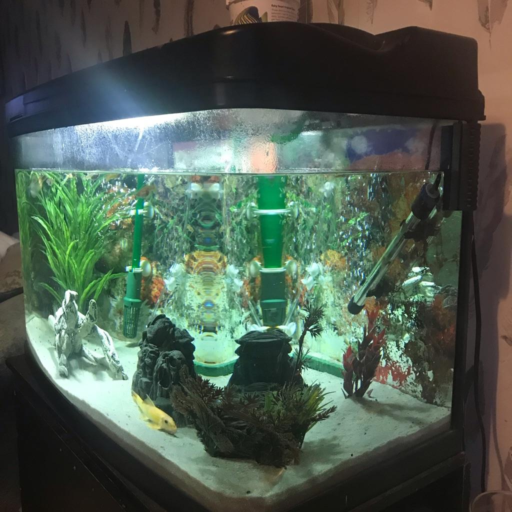 Fish tank - 125litres