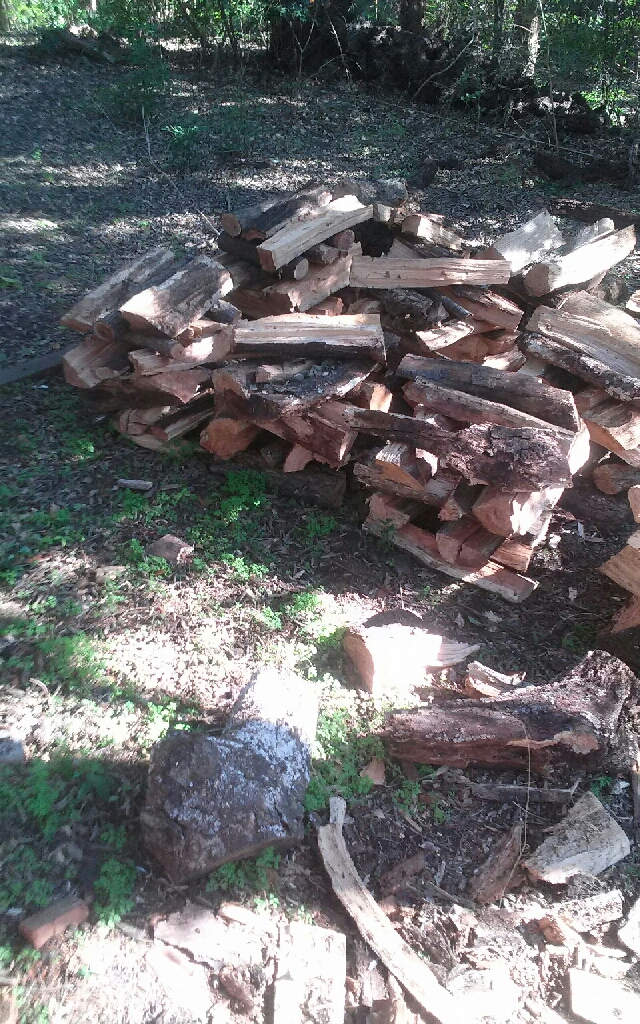 FRESHLY CUT FIREWOOD