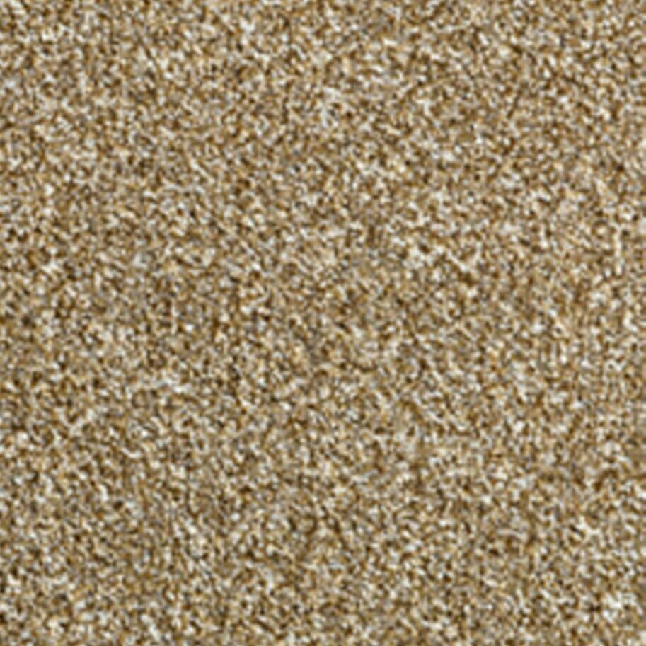 Carpet - Roughly 22sqm - Immaculate - £OFFERS