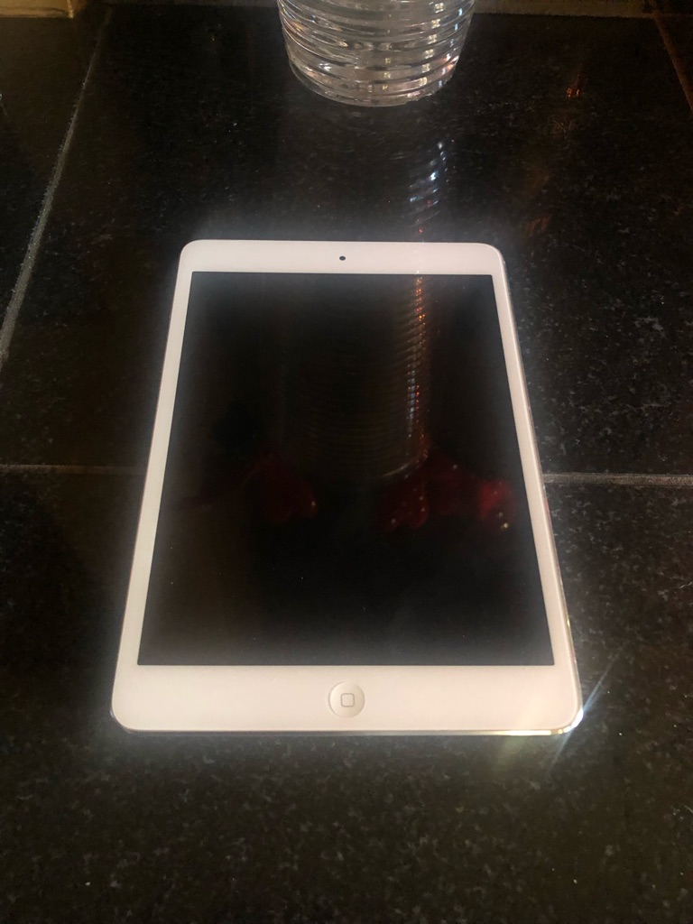 iPad Mini /Retina Display 16 gb /Cellular