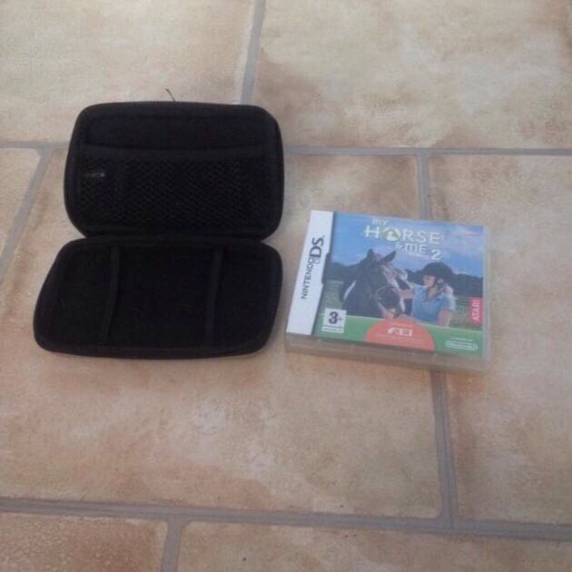 Nintendo DS game and case