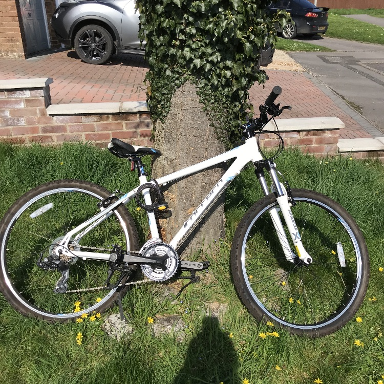 Women's Carrera Valour mountain bike