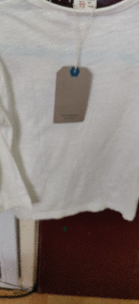 Zara boy's T-shirt