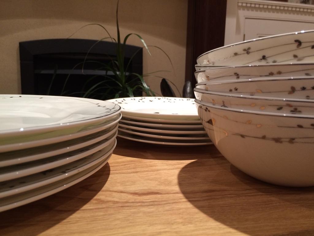 Fine bone china plate bowl bird crockery dinnerware