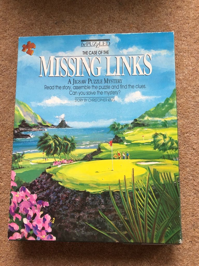 The Case of the Missing Links Puzzle Game