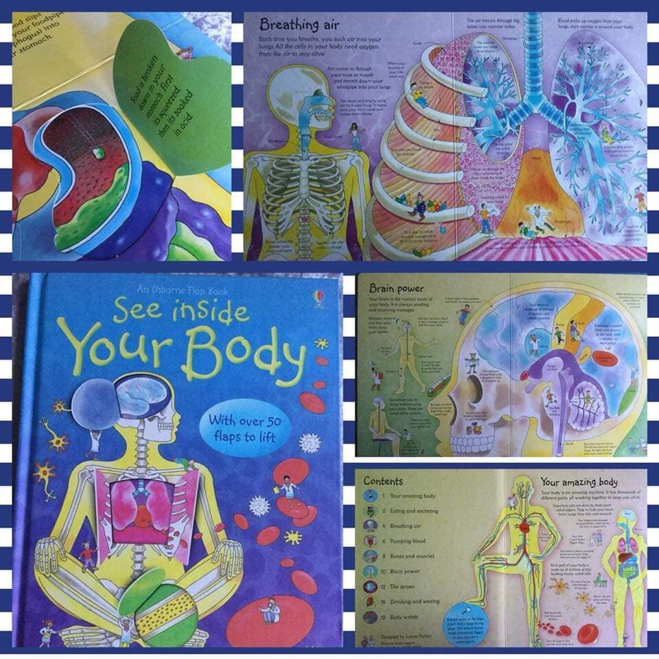Usborne - see inside your body book