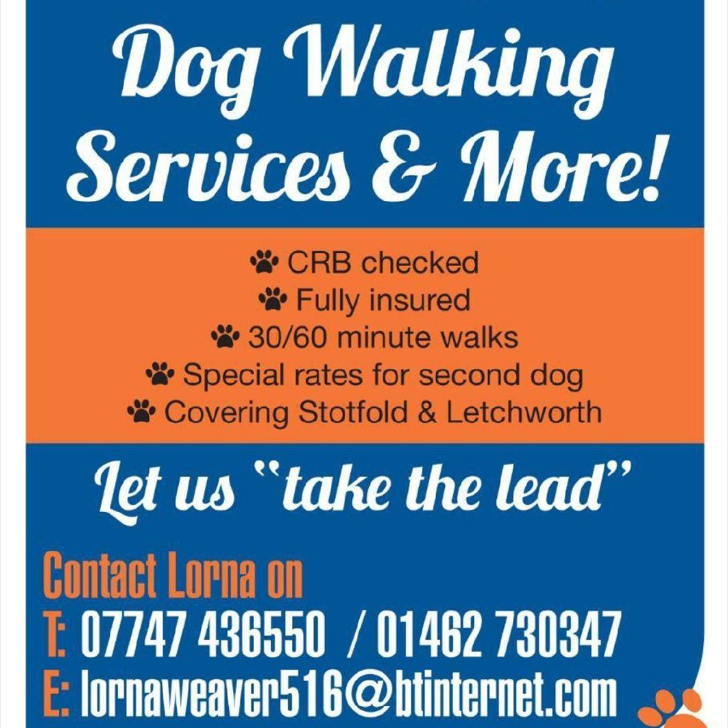 Dog Walking Stotfold