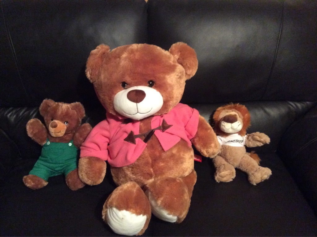 2 Teddies and 1 Lion
