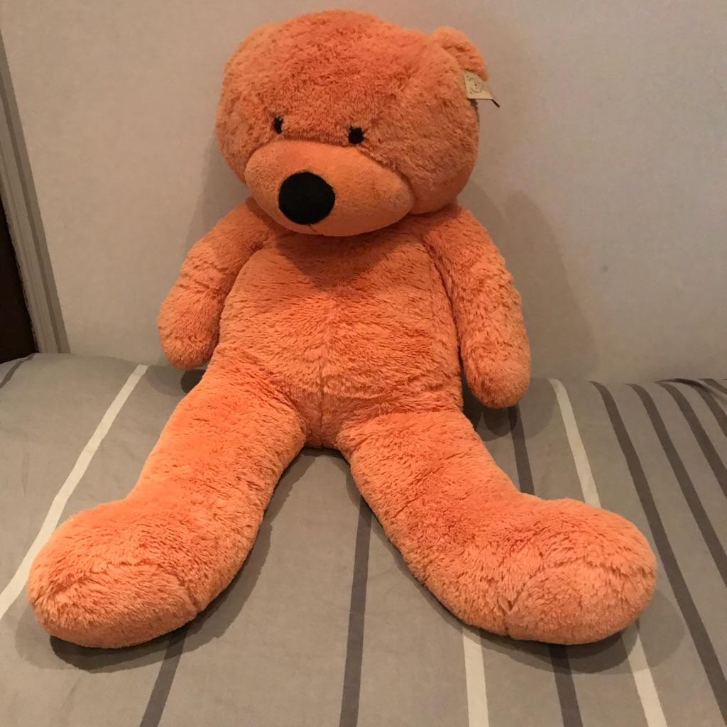 Teddy bear for 30 pound