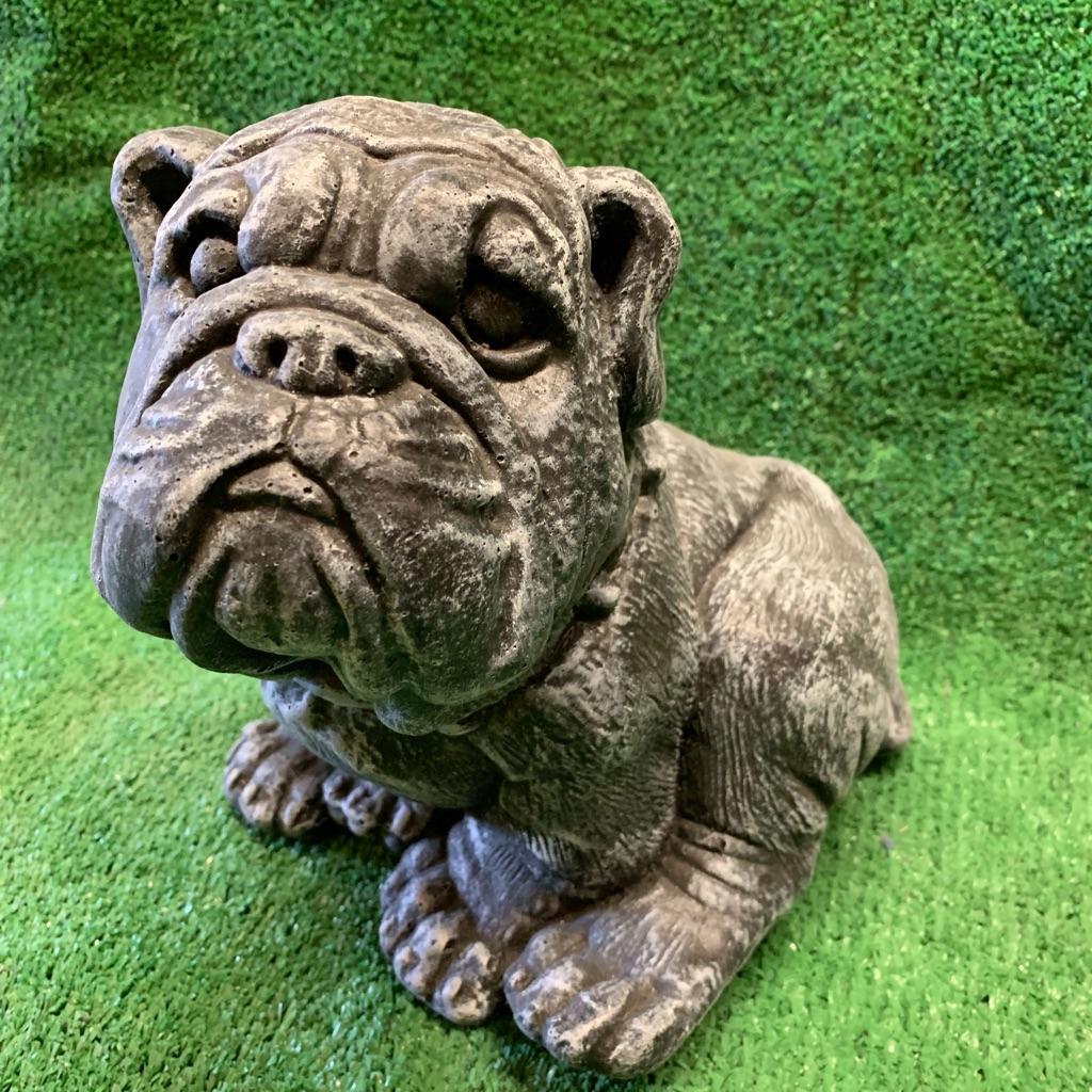 Concrete Bulldog