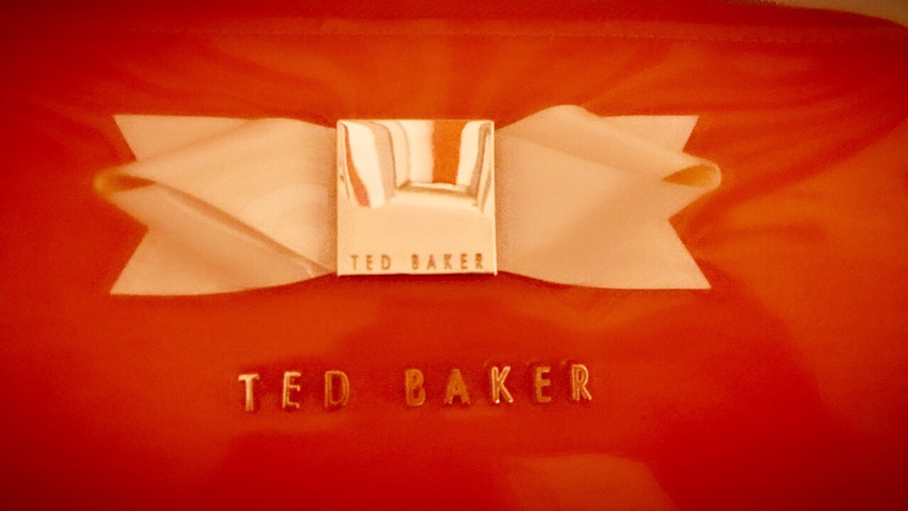 Ted Baker( makeup bag)