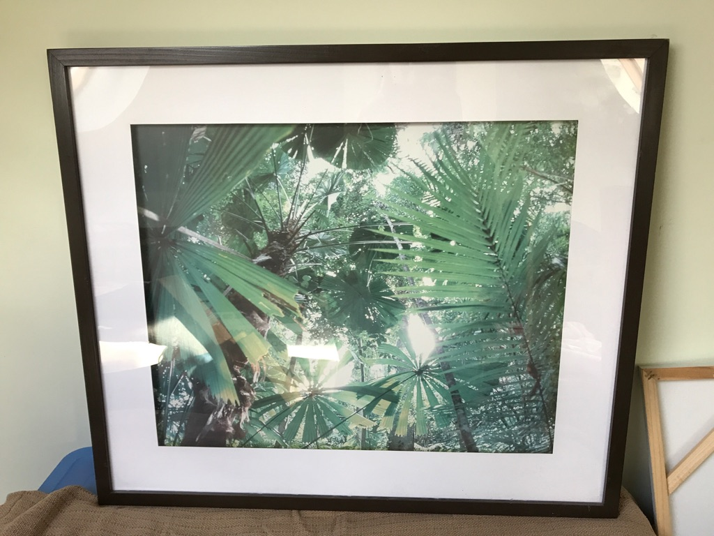 Jungle leaf framed picture large