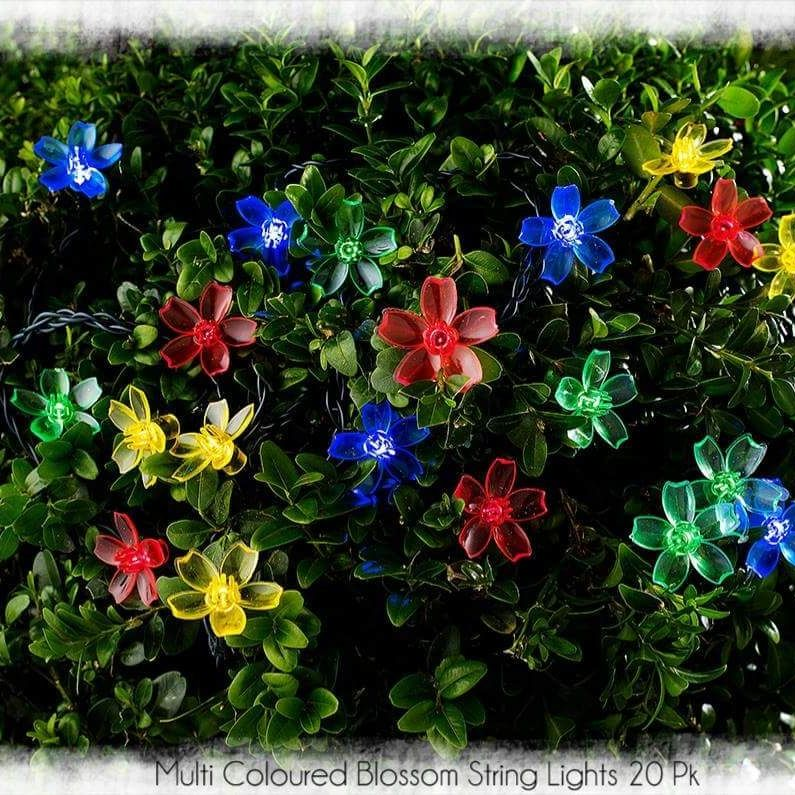 Multi Coloured Blossom String Lights 20 Pk.