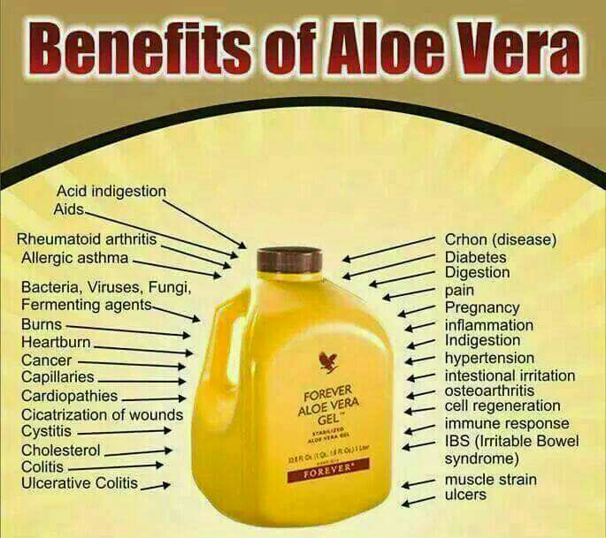 aloe gel drink