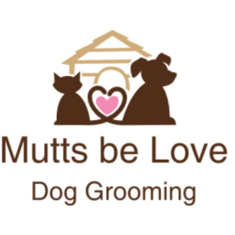 Fully Qualified Dog Groomer