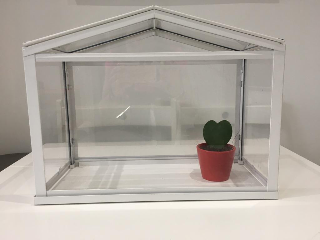 Miniature IKEA Greenhouse