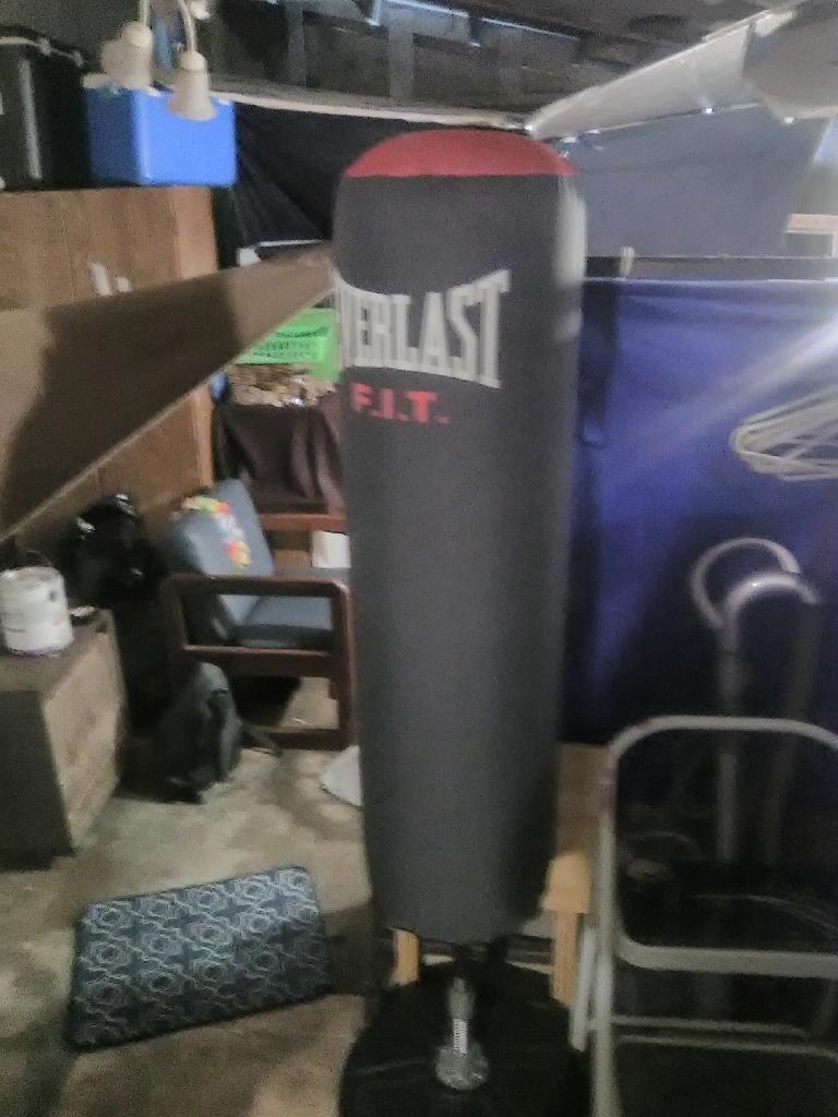 Everlast standing punching bag