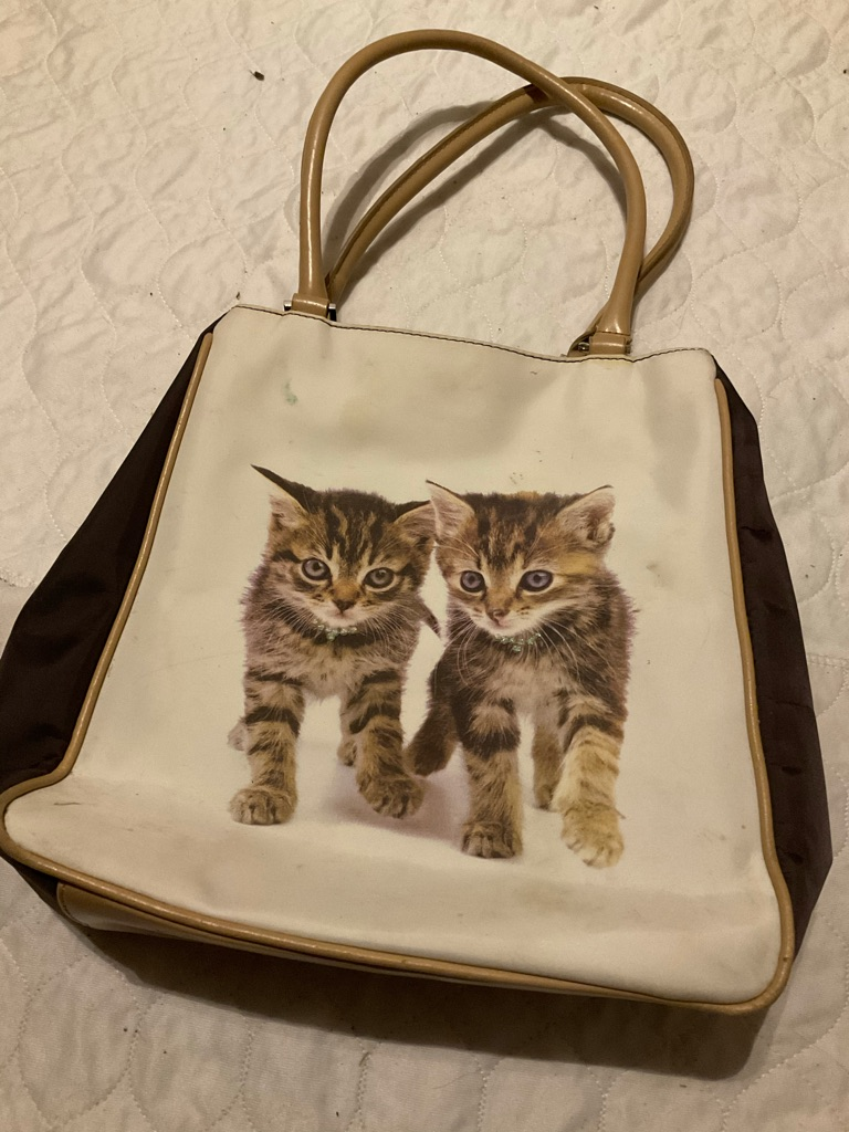 Next kitten bag