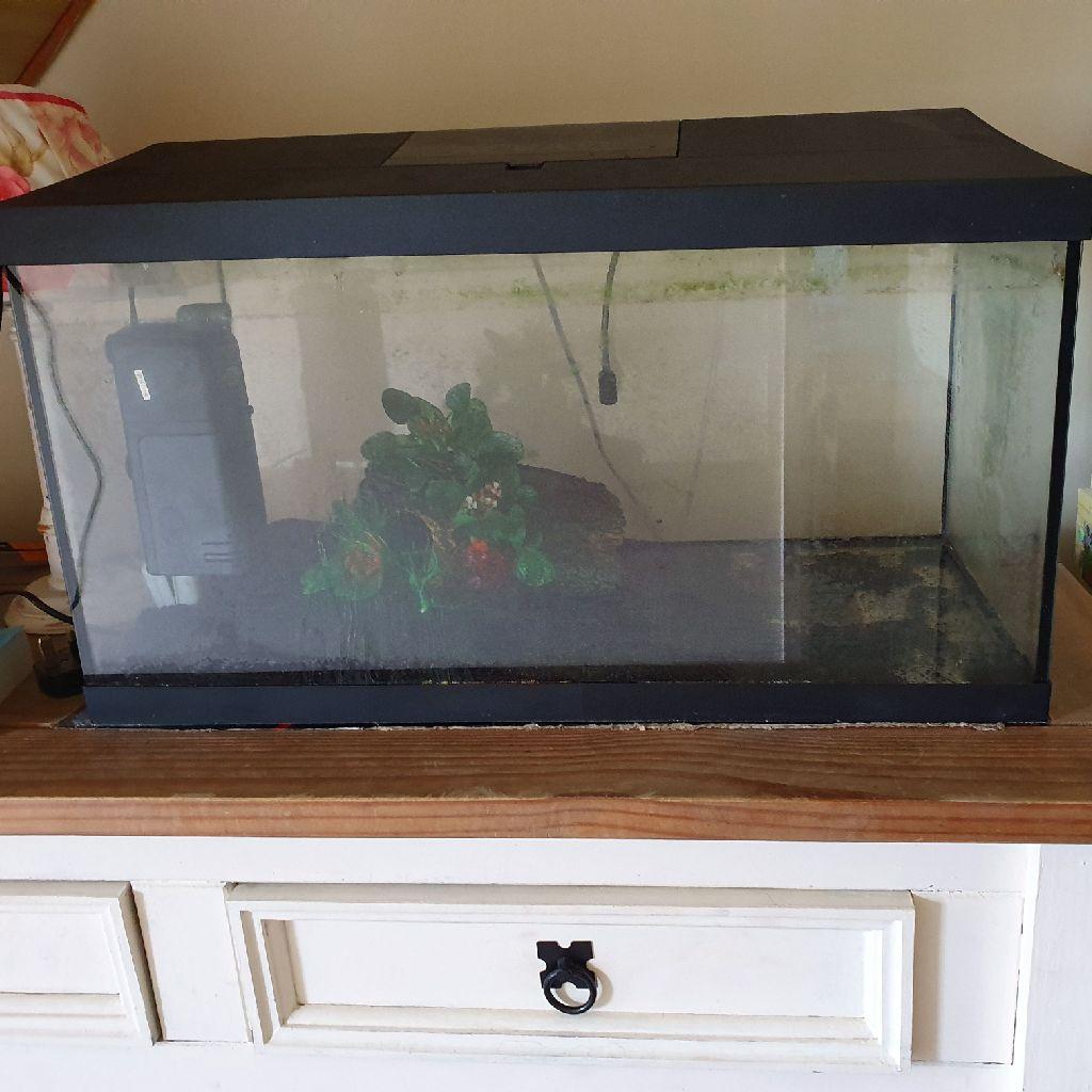 2ft x 1ft x 1ft fish tank