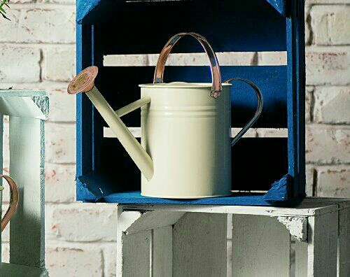 4.5 L metal watering can