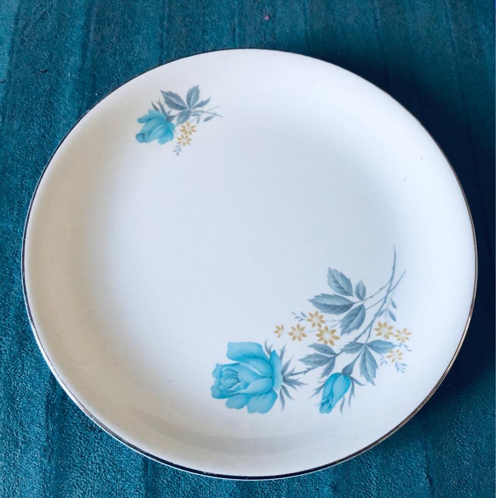 Vintage Barrett's Of Staffordshire Dinner Plates