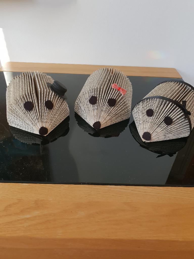 Hedgehogs book folded