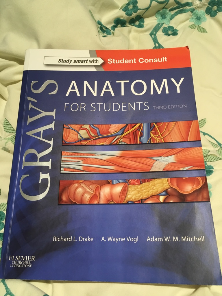 Grey's Anatomy Medical (barely used)