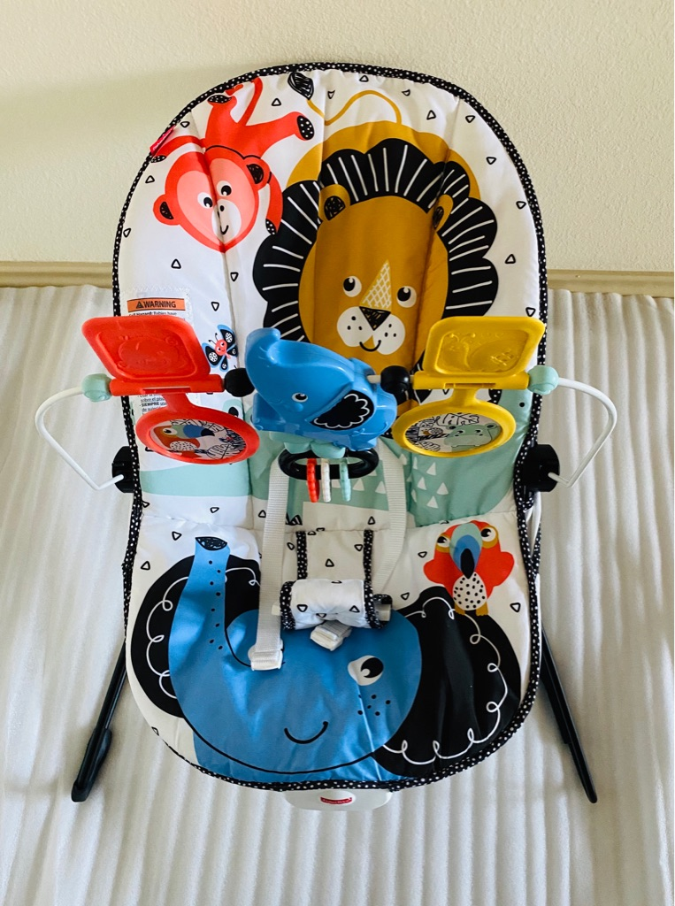 Fisher Price Infant Baby Bouncer Activity Center